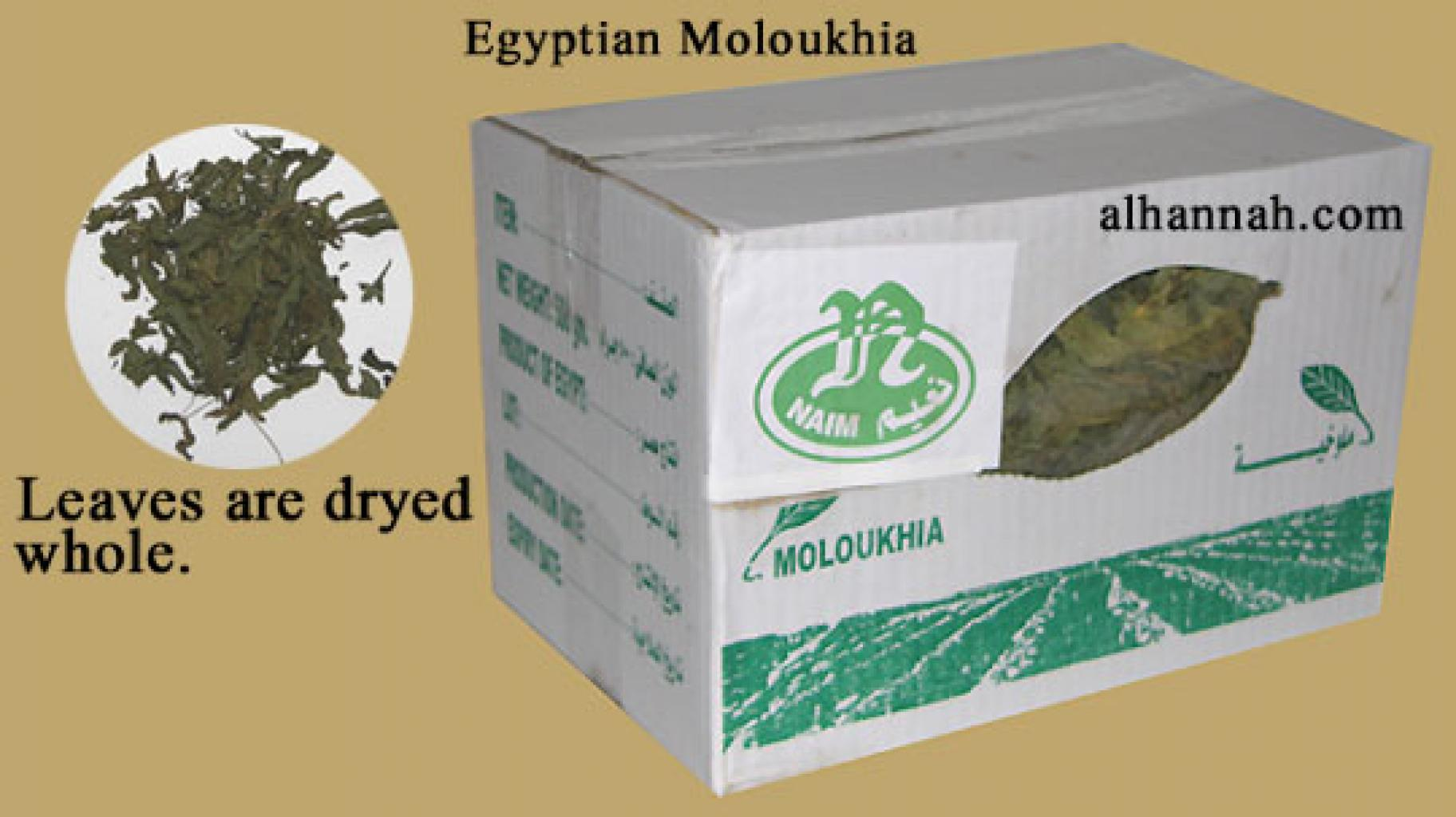 Egyptiske Moloukhia in231
